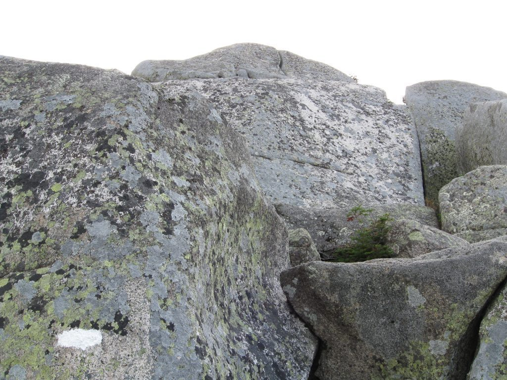Sometimes boulders and flat rocks can be good for bedding and high ground from flooding.